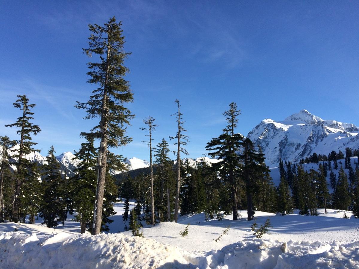 Snowshoeing Mt. Baker & Mt. Shuksan, WashingtonState