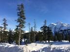 Snowshoeing Mt. Baker & Mt. Shuksan, Washington State